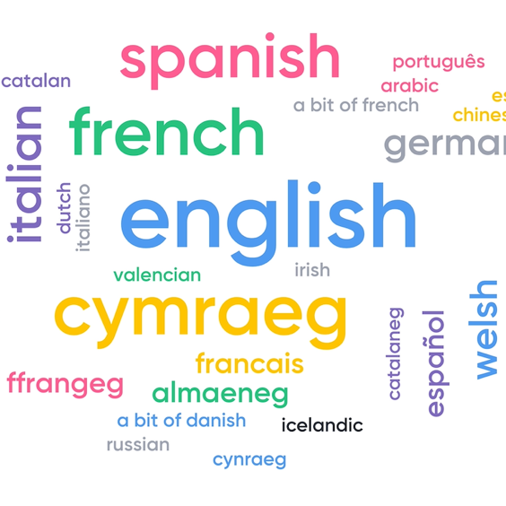 Word cloud of languages spoken by attendees